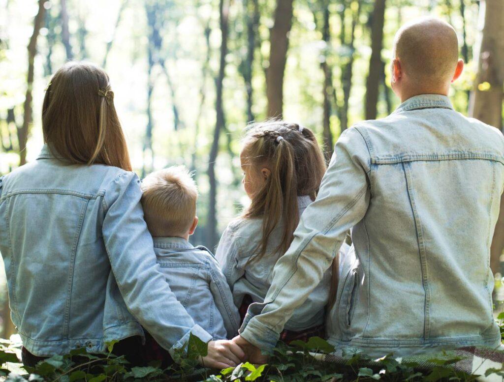 visa family spain